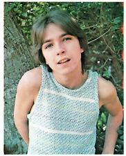 DAVID CASSIDY 1970s color 8 x 10 photo ~ RARE find ~ Partridge Family ~ VINTAGE