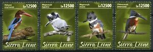 Sierra Leone Birds on Stamps 2020 MNH Kingfishers Crested Kingfisher 4v Set