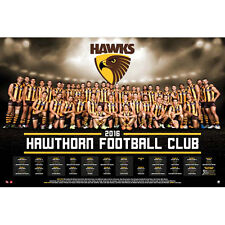 AFL - 2016 Team Posters Hawthorn Hawks POSTER 61x91cm NEW * Footy
