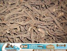 1kg Löwenzahnwurzel Löwenzahn Wurzel Nager Chinchillas