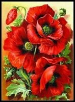 Oriental Red Poppy - Chart Counted Cross Stitch Patterns Needlework DIY