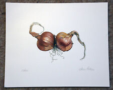 Beautiful botanical limited edition signed print 'Shallots' by Ann Swan
