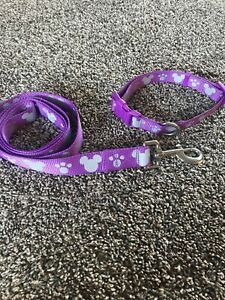 "LOT Disney Parks Tails Mickey Mouse Purple Dog Lead Leash EUC 48"" PLUS COLLAR"