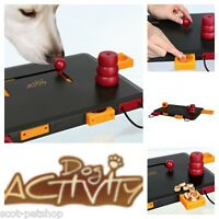 Dog Toy Training Activity Move2Win 32025