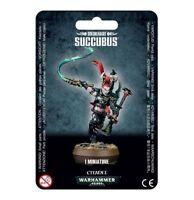 Drukhari Succubus Warhammer 40K Dark Eldar Games Workshop DE GW Wyches Cult