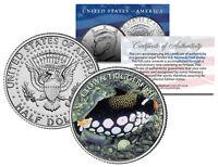 TRIGGERFISH * Fish Series * JFK Kennedy Half Dollar U.S. Colorized Coin