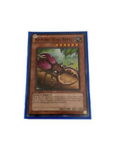 YUGIOH Naturia Earth Deck Complete 40 - Cards w/ Sleeves