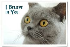 I Believe In You, 12x18 inch Cat Poster, British Shorthair, Motivational Poster
