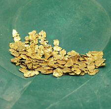 5 LB JACKPOT PAYDIRT ™ Gold Panning Concentrate - Find Nuggets Flakes Specimen