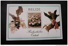 Belize 896 flower flora orchid MNH souvenir sheet block from 1987