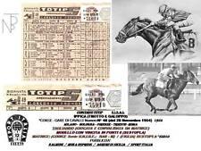 Ippica-Corsa dei Cavalli / TOTIP-SISAL (Schedina) 1954