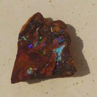 52.5 ct  Lapidary Yowah Nut Koroit Boulder opal Specimen Iron stone