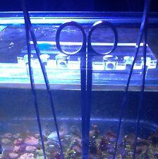 New Marine Tropical Aquarium Tweezers Scissors Propagation Tool Holder Acrylic