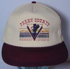 Vintage 1990s PERRY COUNTY PENNSYLVANIA EAGLE SUNSET GRAPHIC PA SNAPBACK HAT CAP