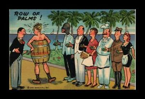 DR JIM STAMPS US ROW OF PALMS IN FLORIDA TOPICAL LINEN COMIC POSTCARD