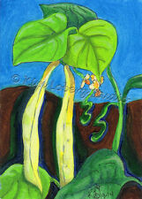 climbing Kentucky Wonder wax Beans ACEO EBSQ Kim Loberg Garden Mini Art Blossoms