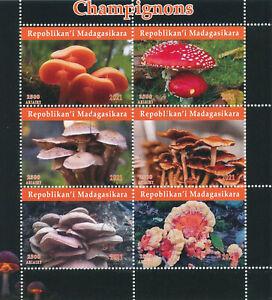 Madagascar 2021 CTO Mushrooms Stamps Fungi Champignons Nature 6v M/S