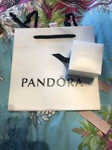 Pandora Bag And Charm Box New