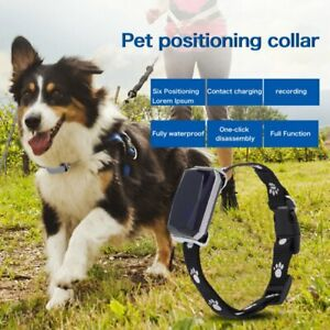 Pet GPS Trackers Real-Time GSM Dog Cat Tracking Collar Position Activity Monitor