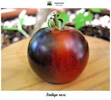 Tomate Indigo rose - 50 semillas - var. tomate azul - Saatgut - Graines - Semi