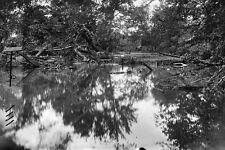New 5x7 Civil War Photo: View of Bull Run Creek near Manassas, 1861