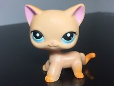 Littlest Pet Shop Cat # 339 Orange Yellow Short Hair Blue Eyes