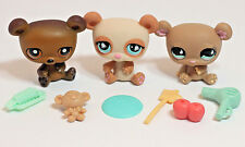 Littlest Pet Shop Trio of RARE Bears Panda #925 Teddy #911 Around the World #395