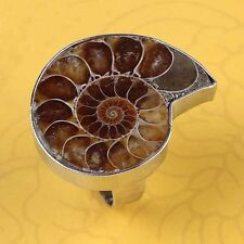 Natural Ammonite Fossil Gemstone Unisex Adjustable Stone Finger Ring Jewelry