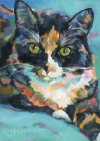 KMSchmidt ACEO Ltd Ed Collectible Art Card- TUXEDO TABBY CAT turquoise blanket