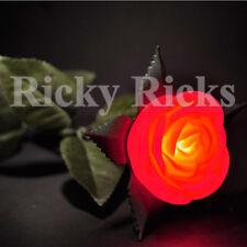 12 LED Flowers Roses Valentines Red Pink Romantic Plastic Light Up Set Wedding
