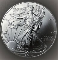 2013 Silver American Eagle BU 1 oz Coin US $1 Dollar Mint Uncirculated Brilliant