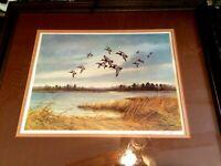 Canvasbacks Landing In Marsh at Dusk Framed Print by John W Taylor Pencil Signd