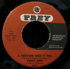 DENNY REED-Hot Water & A Teenager Feels It Too-Rare Teen Rock 45-TREY #3007