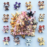 5pcs lot Random LPS Collie Dog+shorthair cat Littlest Pet Shop toy Surprise Gift