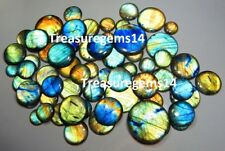 250Crt 100% NATURAL WHOLESALE LOT MULTI FIRE LABRADORITE ROUND CABOCHON GEMSTONE