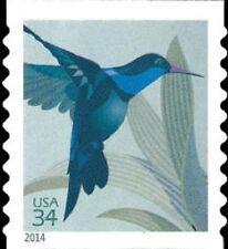 2014 34c Hummingbird, Coil Scott 4858 Mint F/VF NH