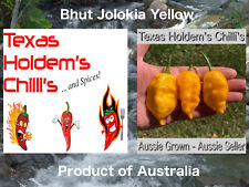 Bhut Jolokia Yellow (Ghost) Chilli Seeds x 20 Seeds. Extreme heat and flavour!