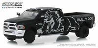 A.S.S NEU GreenLight 1/64 Dodge RAM 3500 Laramie Dually Drivers Series 1 2019