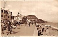 POSTCARD    DEVON    SIDMOUTH   The  parade  Looking   East