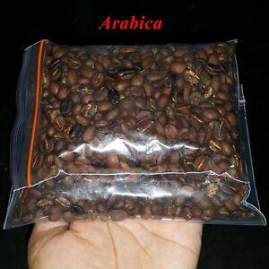 Traditional Arabica Kopi Luwak Indonesian Wild Civet Coffee Roasted Beans