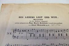 Zither Konzertzither - Walzer komp. von Josef Haustein - Des Lebens Lust und weh