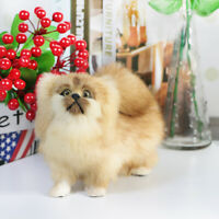 Realistic Pekingese Plush Dog Model Puppy Pet Toy Animal Doll Prop Decor Gift