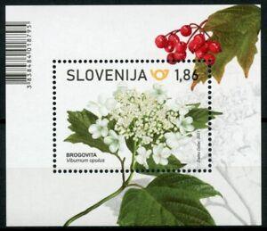 Slovenia Flowers Stamps 2021 MNH Guelder Rose Nature Plants Flora 1v M/S