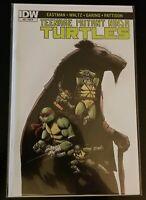 Teenage Mutant Ninja Turtles #52 IDW Jennika First Full Apperance RI Incentive