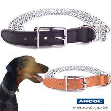 Collares de cadena para perros