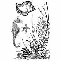 KaiserCraft Clear Stamps Coastal Escape - Beach Nautical Underwater Seahorse
