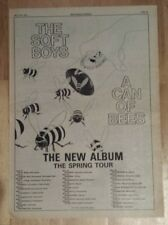Soft boys can of Bees tour  1979 press advert Full page 28 x 39 cm mini poster