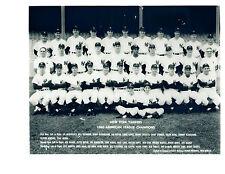 1960 NEW YORK YANKEES TEAM 8X10 PHOTO MANTLE MARIS  BASEBALL BRONX USA
