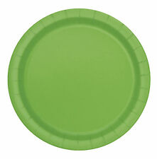 Party Plate without Theme