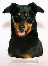 statuette photosculptée 10x15 cm chien beauceron 8 dog hund perro cane